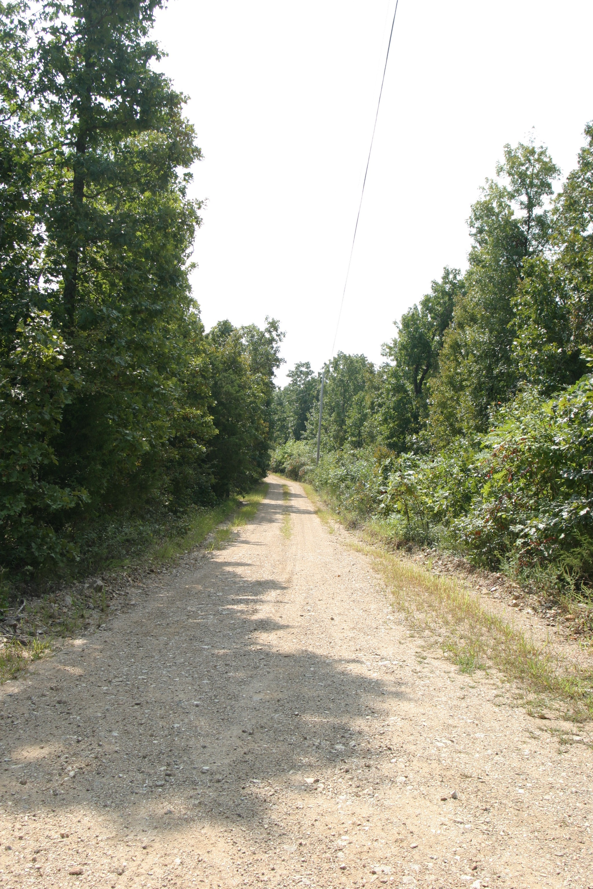 This portion of our road may soon be developed