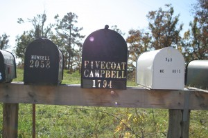 Other view of mailboxes