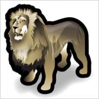 lion_101220